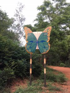 Near Youth Centre, Auroville, India
