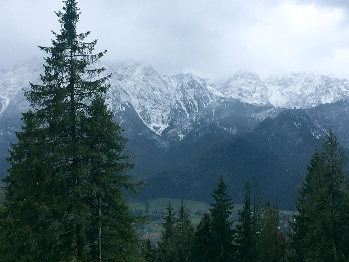 Through the forests and mountains of Zakopane