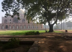 Back on the Road, Nomadic in Delhi